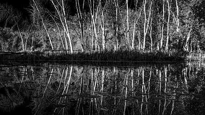 Moira River, October 08, 2019, Canon EOS R, 1/160, F13, ISO 160