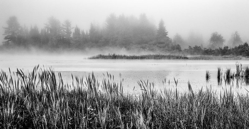 Early morning fog, Algonquin Park, June 22, 2018, Canon 6D, 24-105, .5 sec, F11, ISO 50