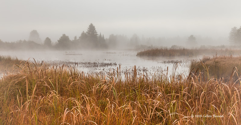 Lake of Two Rivers, Algonquin Park, Sept 27 2013, #8244, Canon 6D-.8sec-F14-ISO50-LR5