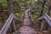 Beaver Pond trail, Algonquin Park, Sept 25 2014, Canon 6D, 13sec,F20,ISO50