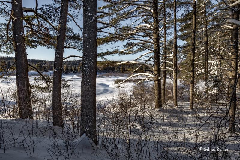 Snowscape, Algonquin Park, March 4 2016, Canon 6D, 24-105mm, 1/15sec, F18, ISO 50