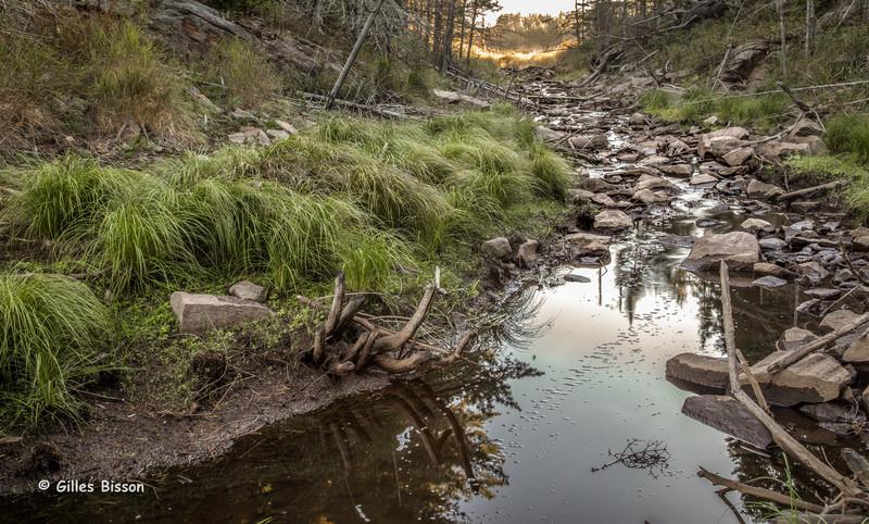 Landscape, Algonquin Park, September 26 2015, Canon 6D, 24-105mm, 3.2sec, F16, ISO 50