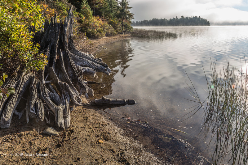 Lake of Two Rivers, Algonquin Park, Sept 27 2013, #8333, Canon 6D-1/15sec-F16-ISO50-LR5