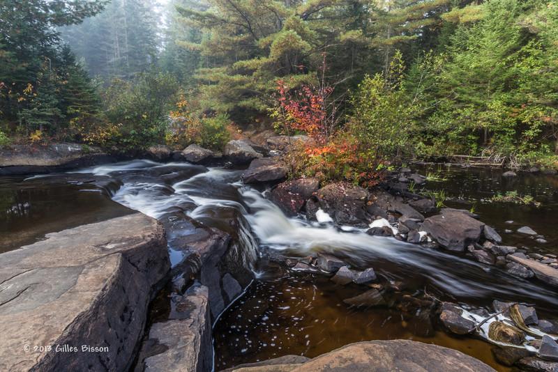 Mew Lake Trail, Algonquin Park, Sept 28 2013,#8584, Canon 6D-1.3sec -F22-ISO50-LR5