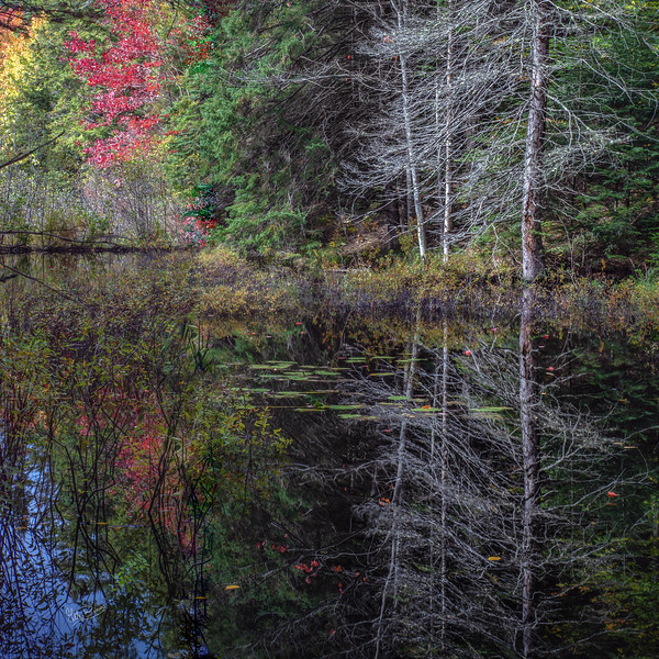 Reflections, Track and tower trail, Algonquin Park, September 29, 2018, Canon 6D, 24-105mm, .5 sec, F18, ISO 50