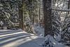 Snowscape, Algonquin Park, March 4 2016, Canon 6D, 24-105mm, 1/15sec, F16, ISO 50