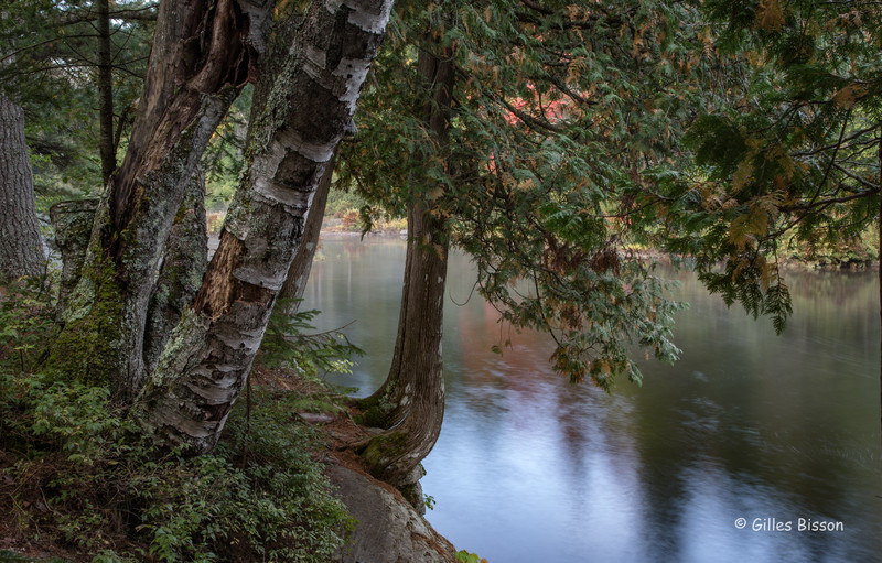 Tea Lake Dam, Algonquin Park, Sept 28, 2016, Canon 6D, 5.0 sec, F18, ISO 50