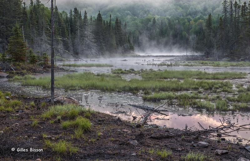 Algonquin Park landscape, June 02,2015, Canon 6D, 24-105mm, 1/2sec, F10, ISO 50