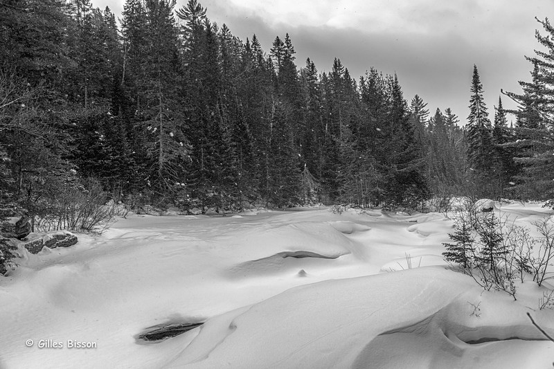 Snowscape,B&W conversion, Algonquin Park,Madawaska River, March 07 2015, Canon 6D, 1/100,F7.1,ISO 125