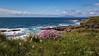 Landscape, Sligo, Ireland, May 18, 2016, Canon 6D, 1/160, F13.0, ISO 250