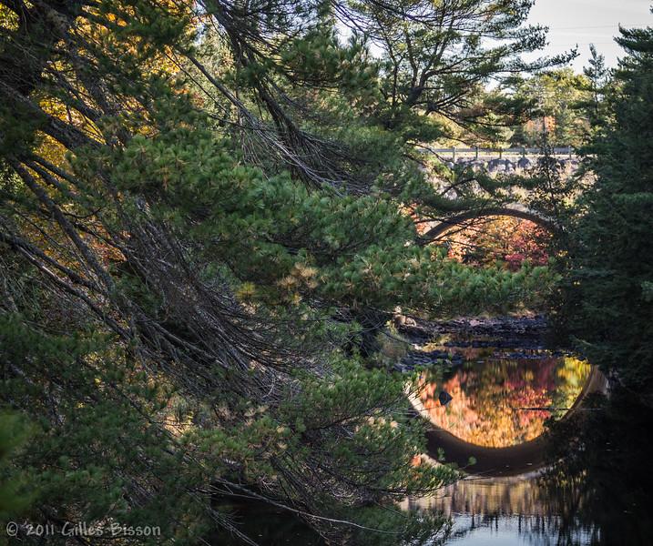 Scenic Bridge Highway 17, October 05 2011