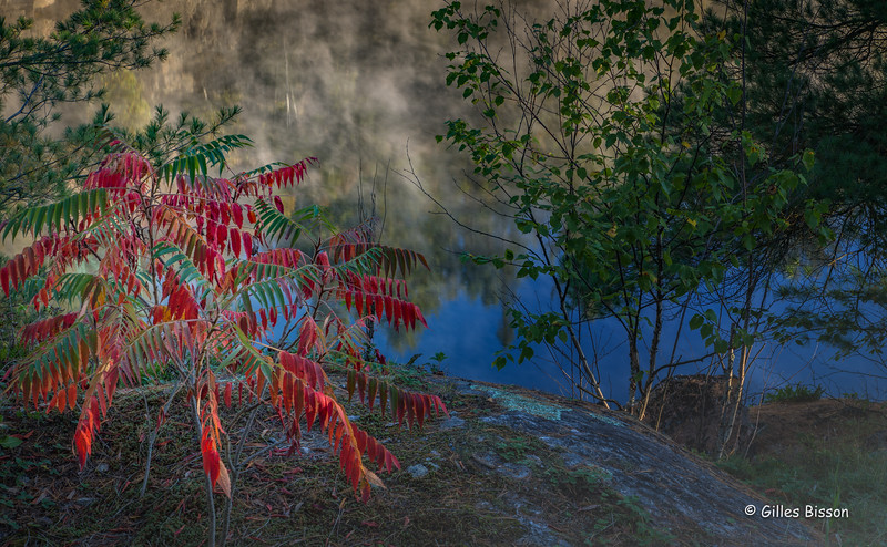French River Fall Colours, October 10, 2016, Canon 6D, 24-105mm, 1/5sec, F13, ISO 50