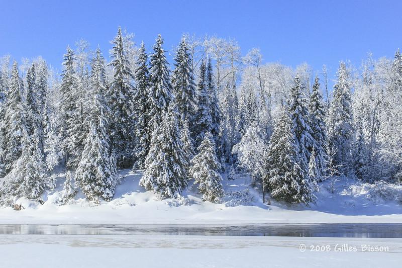 Kapuskasing river, Jan 31 2008, taken from snowshoe trail