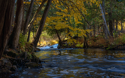 Cordova Falls, Fall landscape, October 11, 2020, Sony AR74, 1/4 sec, F9.5, ISO 100