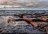 Lakeshore Presqu'ile Provincial Park, October 12, 2018, Canon 7D Mark II, 1/50, F16, ISO 100