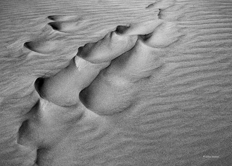 Shifting Sand at Sandbanks