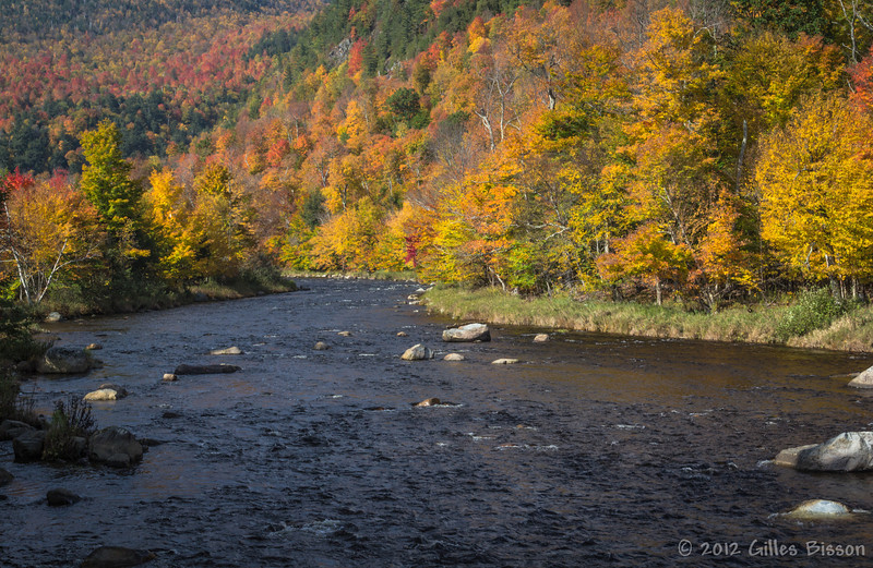 River close to High Falls Gorge, New York, October 05 2012