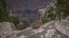 Grand Canyon, South Rim, Arizona, April 05 2013, #1120