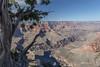 Grand Canyon, South Rim, Arizona, April 05 2013, #1026