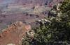 Grand Canyon, South Rim, Arizona, April 05 2013, #0901