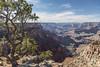 Grand Canyon, South Rim, Arizona, April 05 2013, #0985