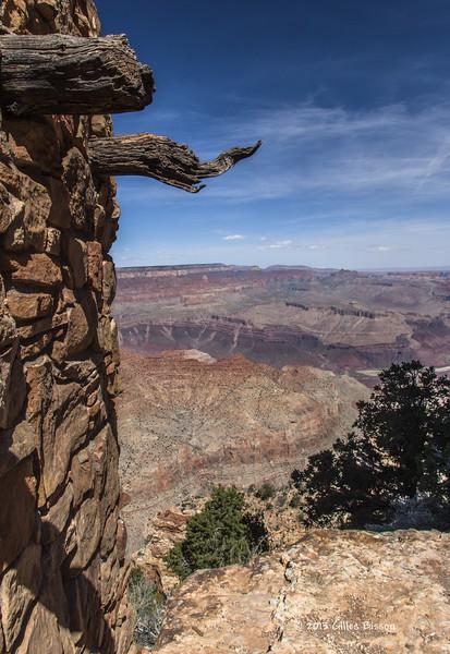 Grand Canyon, South Rim, Arizona, April 06 2013, #1522