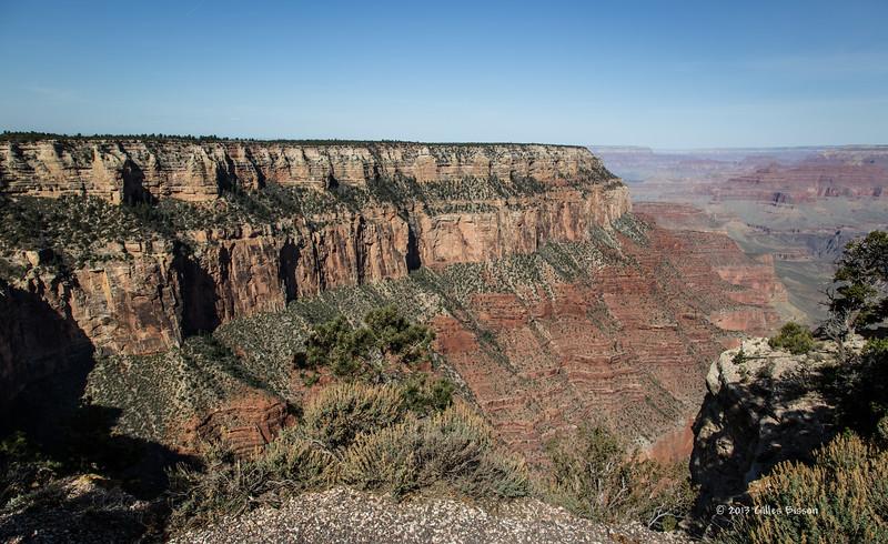 Grand Canyon, South Rim, Arizona, April 06 2013, #1385