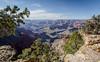 Grand Canyon, South Rim, Arizona, April 05 2013, #0970