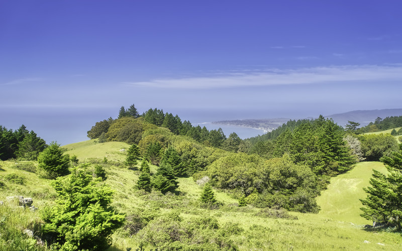 Stinson Beach seen from the Matt Davis Trail