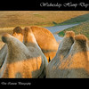 "Camel humps at The Wilds:  <a href=""http://www.thewilds.org"">http://www.thewilds.org</a>"