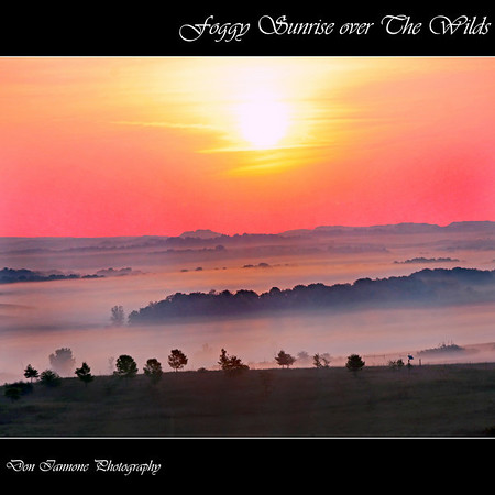 "Foggy sunrise at The Wilds:  <a href=""http://www.thewilds.org"">http://www.thewilds.org</a>"