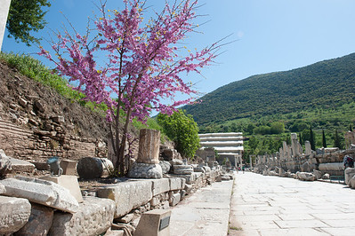 Ephesus - ancient stone road from harbor to city center
