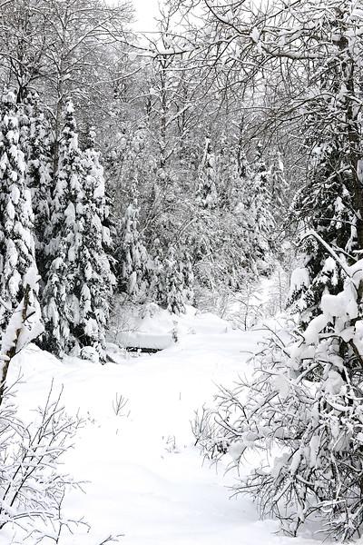 Quebec 16.jpg