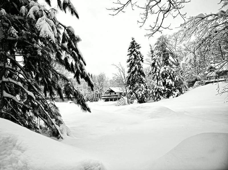Quebec Province - Christmas 2012 2.jpg