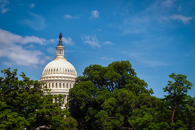 US Capitol 28