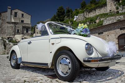 Italian Bug