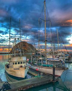 Nadine, Morro Bay