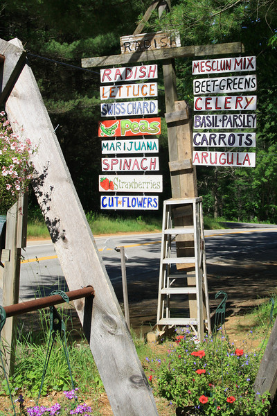 SC 38 Farm Stand Sign