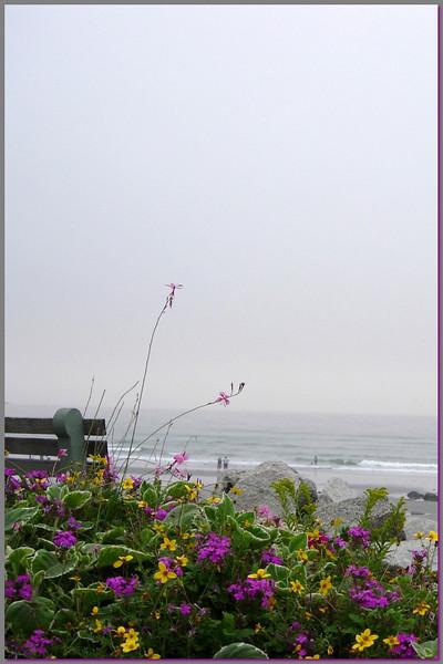 SC 10 York Beach  Maine