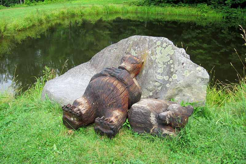 SC 136 Sleeping Bears