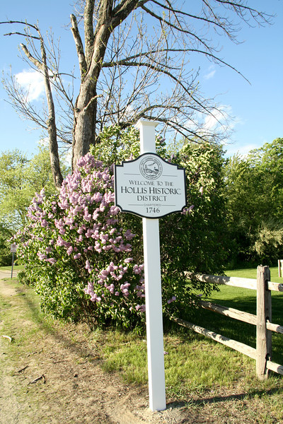 SC 86 Hollis Sign & Lilac Bushes