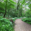 SC 325 Peaceful Path - Goatland, UK