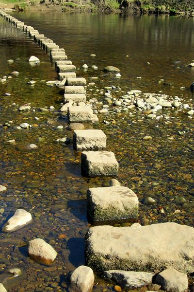 SC 169 Stepping Stones