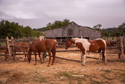 Dixie Dude Ranch-21