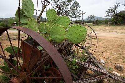 Dixie Dude Ranch-5
