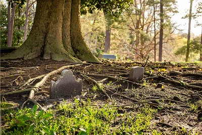 Ivy Hill Cemetery 4-2019 (19)