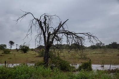 Rainy Drive S TX 16 to Fredericksburg (12)