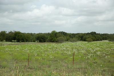 Wide open Texas
