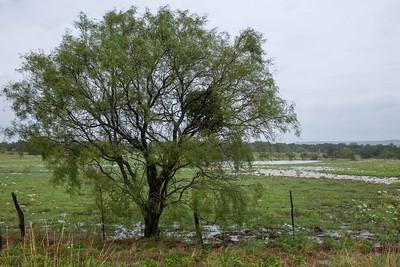 Rainy Drive S TX 16 to Fredericksburg (9)