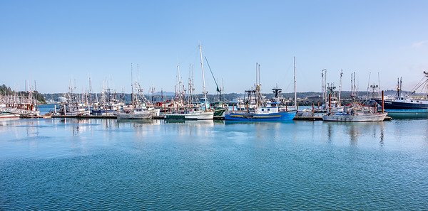 """Newport Commercial Fishing Fleet"""